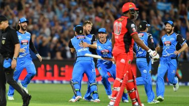 Broadcasters are putting in their bids for cricket rights including the Big Bash league.