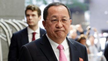 North Korea's Foreign Minister Ri Yong Ho.
