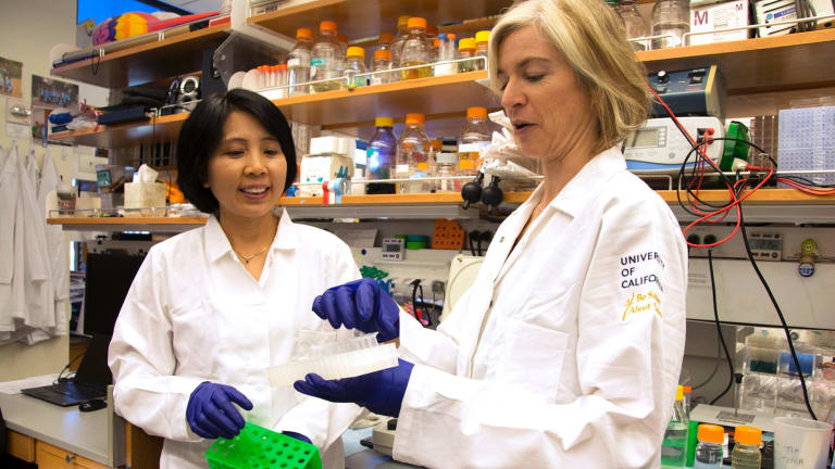 CRISPR co-inventor Jennifer Doudna, right, and lab manager Kai Hong in Berkeley, California.
