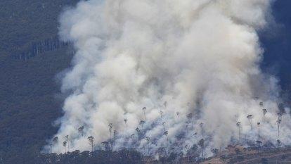 'Months of haze': Doctors demand smoke pollution check as pandemic raises burn-off fear