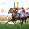 Race-by-race guide and tips for Taree on Friday