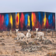 Ash Keating's painting on a Craigieburn warehouse, next to the Hume Highway.