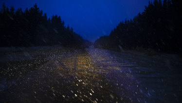 Snow begins to fall in the pine plantations at Shooters Hill near Oberon.