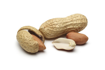 A treatment for peanut allergies would changes the lives of sufferers.
