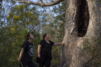 Gundungurra traditional owners Kazan Brown (right) and her daughter Taylor Clarke, with a scar tree on land that would be inundated by floodwater at Burnt Flat if the Warragamba Dam wall were raised.