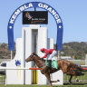 Race-by-race tips and preview for Kembla Grange on Thursday