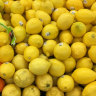 The bitter truth: why are lemons so expensive right now?