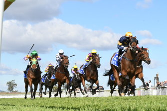 Seven races are set down for Scone on Tuesday.