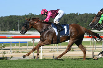A good track is expected for a seven-race card at Wyong on Thursday.