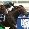 Sydney riches may weaken Cox Plate field more than safety measures