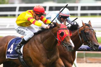 Jockey Mark Zahra was cleared of coronavirus, allowing Victorian racing to resume.
