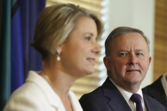 Kristina Keneally's decision to contest a lower house seat has ignited a debate about ethnic diversity in the Labor Party.