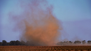 Wind whips up the dust over a dry farm in the Deniliquin region.