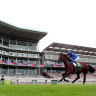 International features to shape Melbourne Cup nominations