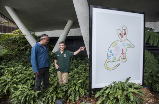 Artist Liam, aged 11, with his bilby artwork being shown to older artist, Neil Thorne.