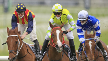 Jockey Nash Rawiller and Eduardo (centre) get the better of James McDonald and Nature Strip in The Shorts last month.