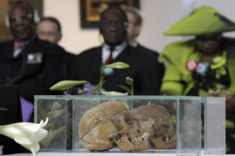 Skulls of Ovaherero and Nama people are displayed during a ceremony attended by tribe representatives in Berlin in 2011.