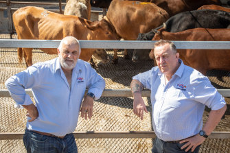 No quick fix: Meramist managing director Mike Eathorne and general manager Adam Hill were at the centre of last year's horse slaughter scandal.