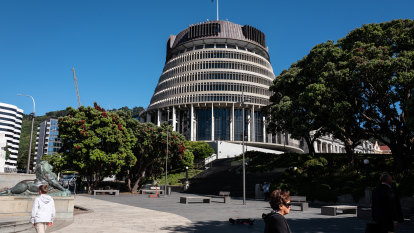 NZ to review Parliament security after axe-wielding man smashes doors