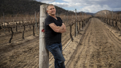 Wine industry withers on vine as Queensland records $18b loss