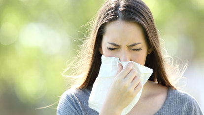 Hay fever and COVID-19 symptoms 'difficult to untangle' as pollen season looms