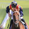 Challengers confident of taking Nature Strip's TJ Smith crown