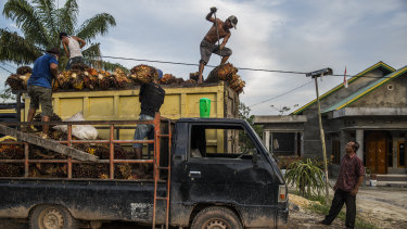 Men transporting palm oil in Indonesia.