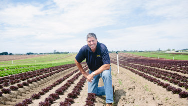 AusVeg chairman and leafy green grower Bill Bulmer said paying higher wages would drive up the cost of food but not solve the labour shortage.