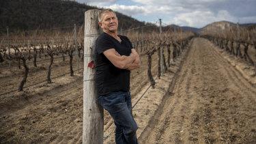 Sirromet Wines chief winemaker Mike Hayes at the vineyard in Ballandean in Queensland's Granite Belt.