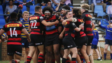 Norths celebrate a try in their two-point win over Sydney University at Rat Park on Saturday.