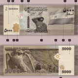The new 5000 Syrian Lira banknote, the largest denomination in the country reeling from 10 years of conflict and a crippling economic crisis.