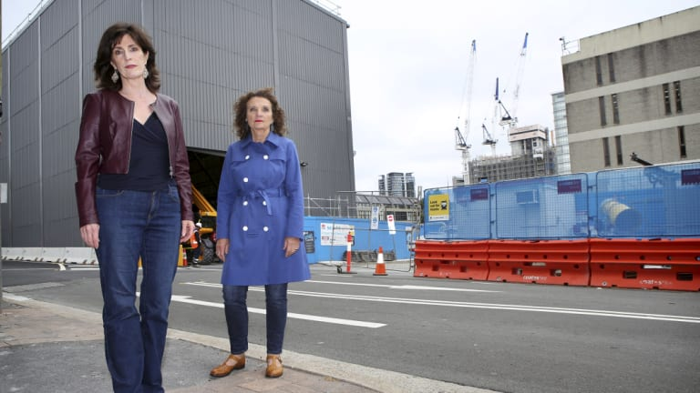 """Former North Sydney mayor Genia McCaffrey (right), pictured with Sue Wadley, said the NSW government was conducting an """"alarming experiment"""" on Sydney."""
