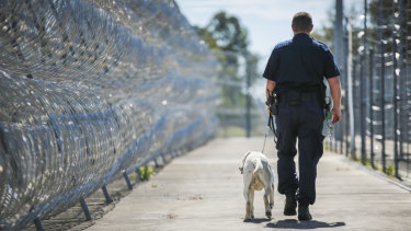 Staff overtime costs in Queensland's prisons are rising.