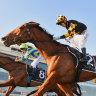 Inside Running: 'Pop-up' races may keep NSW raiders away