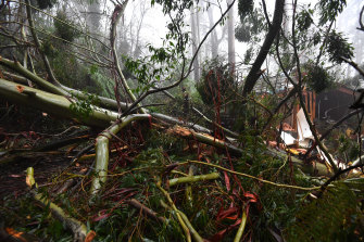 Storms wrought widespread destruction in Olinda and other parts of the Dandenongs, east of Melbourne, last week.