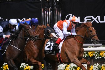 Vow And Declare wins the 2019 Melbourne Cup.