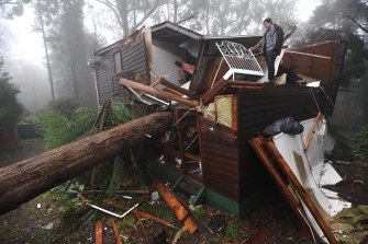 James Pickford was lucky to escape after a large tree smashed through his bedroom, missing his bed by less than a metre in Olinda.