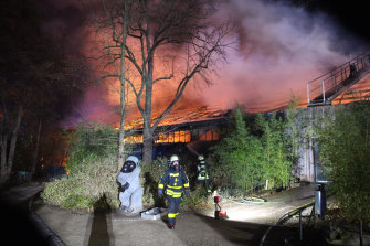 Firefighters in front of the burning monkey house at Krefeld Zoo, Germany on Wednesday.