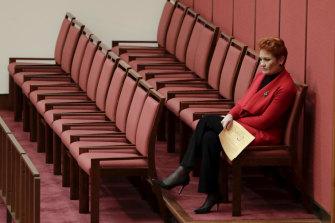 Pauline Hanson in the Senate earlier this year.