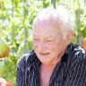 Kitchen Garden: George's big fat Greek garden