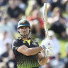 Stoinis sent for hamstring scans, Samuels charged with corruption