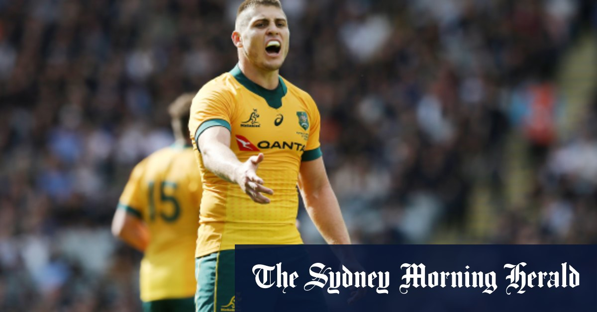 Wallabies won't 'sugarcoat' review after record breaking Bledisloe belting – Sydney Morning Herald