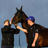 'The day she retires, I'll enjoy it': Why Waller still frets over Winx