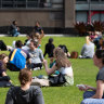Universities in NSW are hoping for the return of international students before the end of the year.