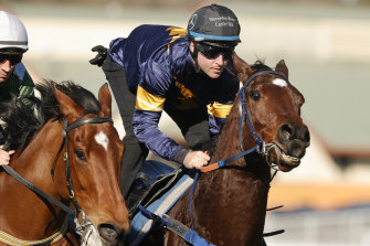 Tommy Berry with a good hold on Masked Crusader at this week's barrier trials.