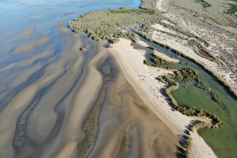 Mangroves meets sand flats in Exmouth Gulf, neighbouring Ningaloo.