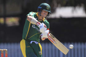 Outrageous: Dave Warner, seen here playing for Randwick-Petersham last November, has reminded all of his skill level.