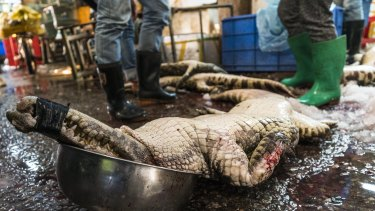 A dead crocodile is seen on the floor of Huangsha Seafood Market in Guangzhou.