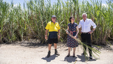 NSW Premier Gladys Berejiklian and Member for Tweed Geoff Provest meet with sugercane farmer Robert Quirk on Tuesday.