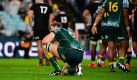 Ned Hanigan on one knee during the Wallabies' record loss.